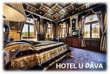 Prague Hotel U Pava